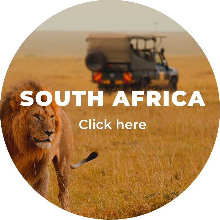 South Africa Safari on a romantic holiday