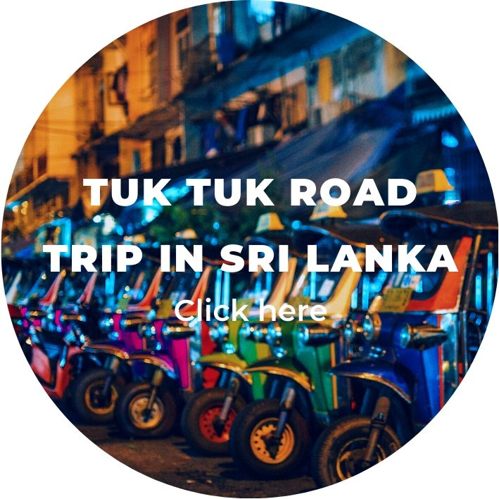 several colourful tuk tuks in sri lanka on backpacking tours